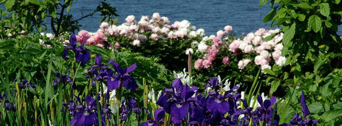 Inn Formal Gardens