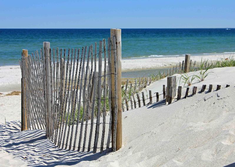 Cape Cod White Sand Beach Dunes