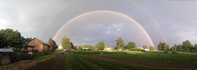 Farm Rainbow image