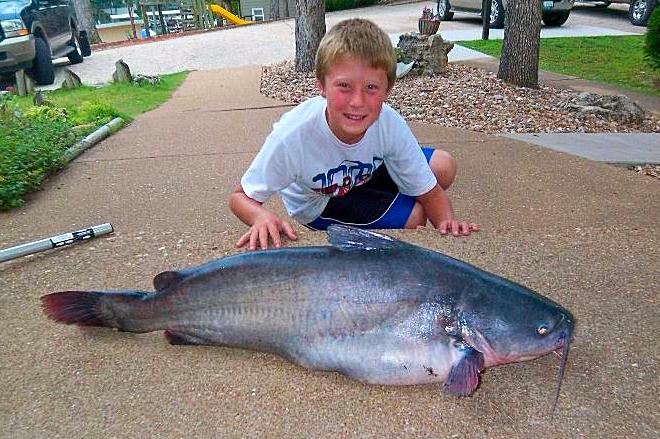Big Fish and Boy