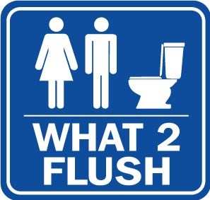 What 2 Flush icon