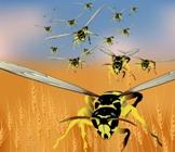 Hornet Nest Swarm