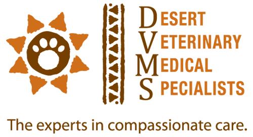 DVMS logo
