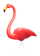 footer flamingo