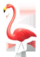 footer flamingo
