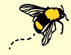 NQA show bee