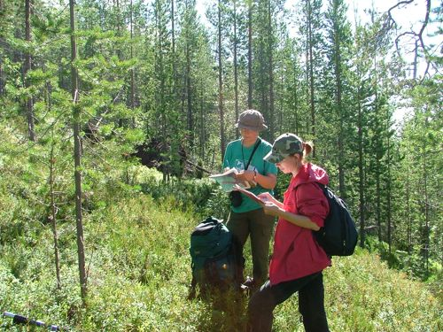 PPS tree survey Russia