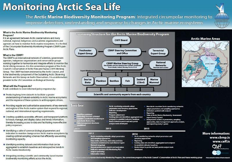 Marine poster: Click for more information