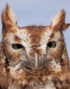 2013 Young Naturalist program