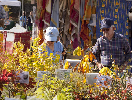 ArborFest shoppers