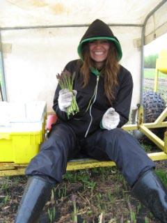 Janelle pciking asparagus