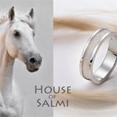 House of Salmi