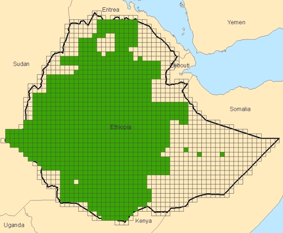 Ethiopia 50K Topo Index Map
