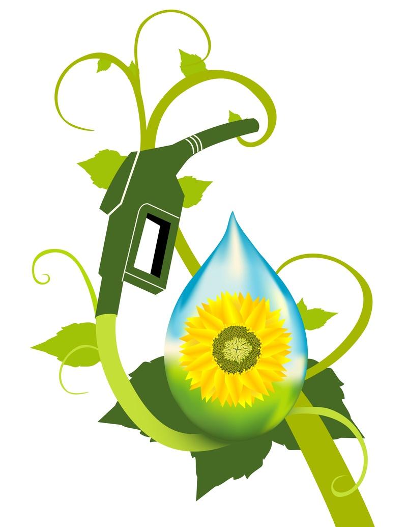 Biofuels2
