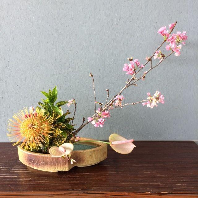 Ikebana March 2016
