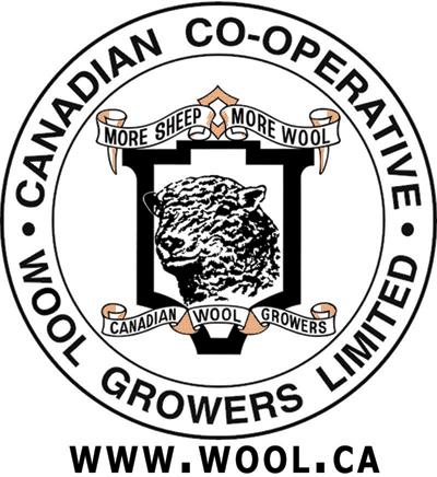 CCWG Logo