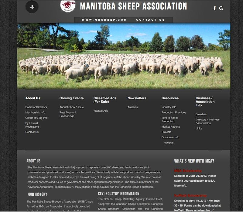 MSA Website