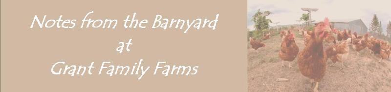 barnyard banner