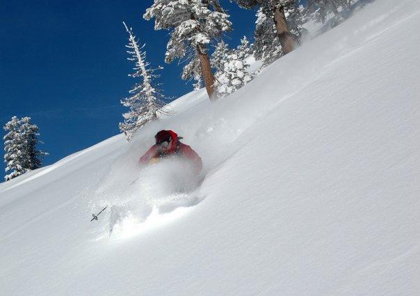skiing pow 2001