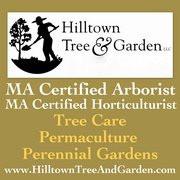 Hilltown Tree and Garden