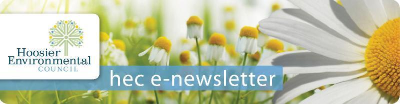 summer e-news