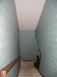 Susanka stairway before