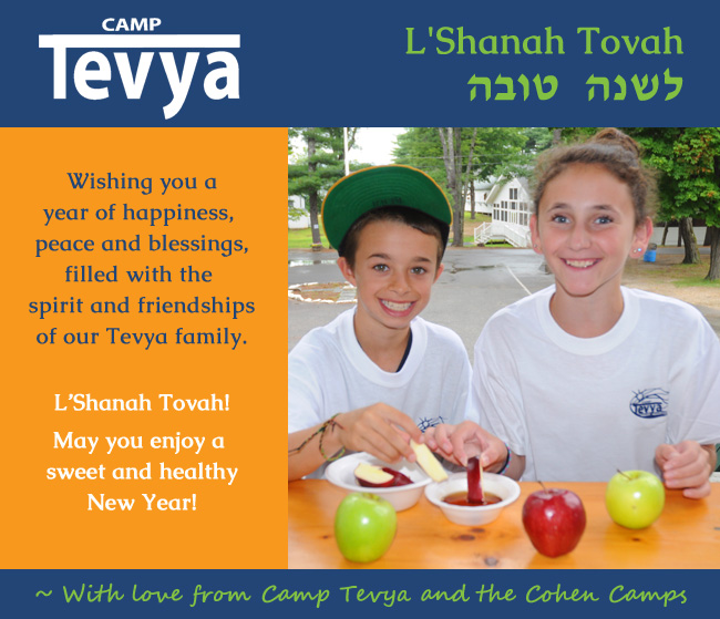 Happy New Year from Camp Tevya