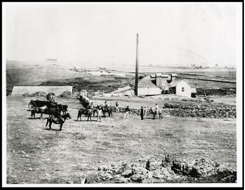Modern steam-powered sugar mill, circa late 1880s (Courtesy BYUH Archives)
