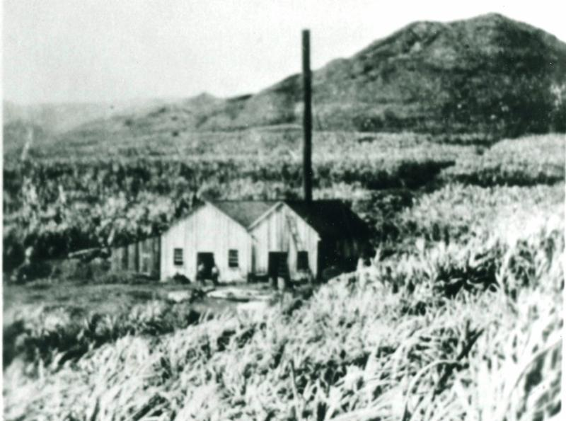 Original mule-powered sugar mill, circa 1870 (Courtesy of BYU-Hawaii Archives)