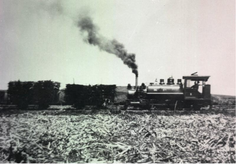 Kahuku Plantation Co. train hauling cane, circa 1915 (Courtesy BYU-Hawaii Archives)