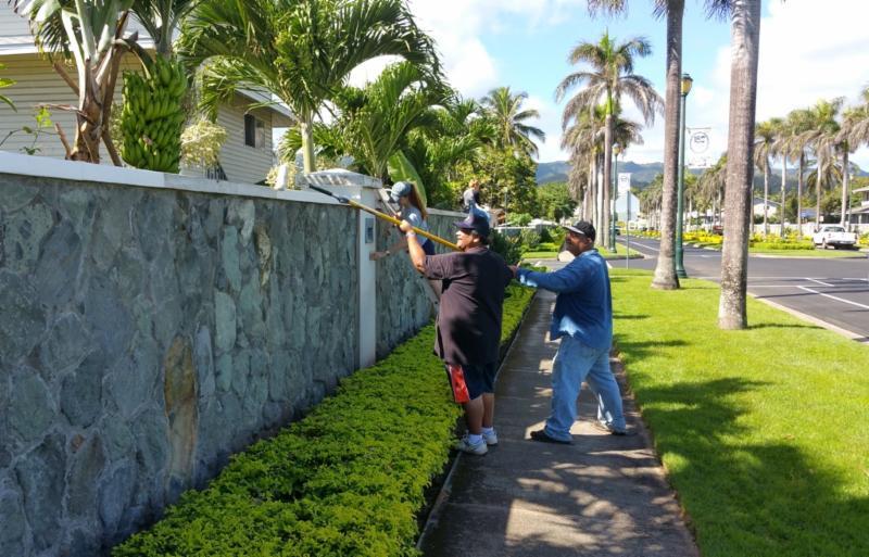 Volunteers repaint the caps of walls along Hale La_a