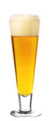 Gose Beer Glass Art