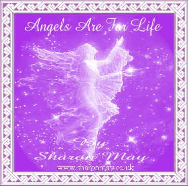 Angel CD