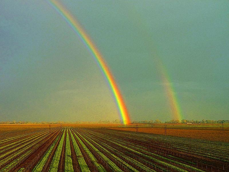 Home Ranch Rainbow