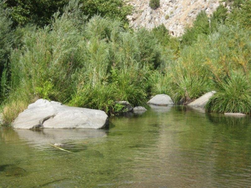 MR River
