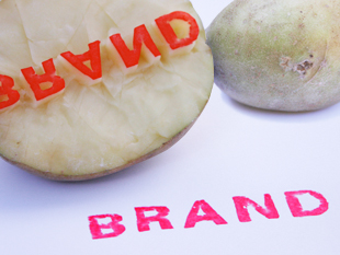 Building your brand on a budget