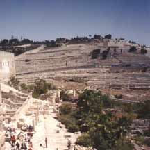 Mount of Olives in Jerusalem (ICEJ Staff photograph)