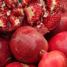 Pomagranates (ICEJ Staff photograph)