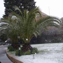 Snow in Jerusalem (ICEJ Staff photograph)