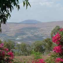 Jezreel Valley (ICEJ Staff photograph)