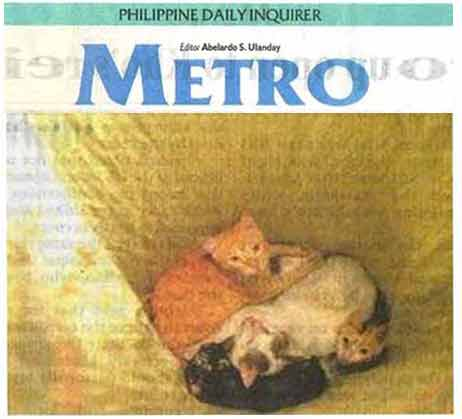 cats in a sack