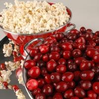 Fragrance Oil - Cranberry Kettle Corn