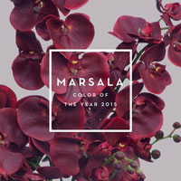 2015 Pantone Color Marsala