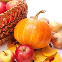 Fragrance Oil - Fall Festival
