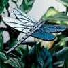 Dragonfly Gar StakeSp11SBGP