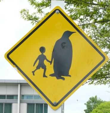 penguin_crossing