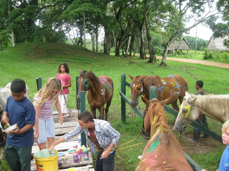 Campers painting their horses.