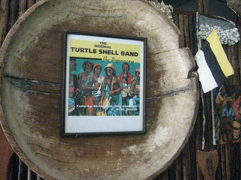 Turtle Shell Band