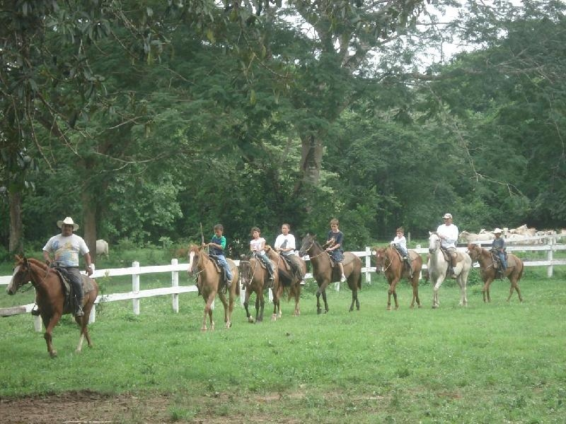 2008 Horse Camp participants practice in arena