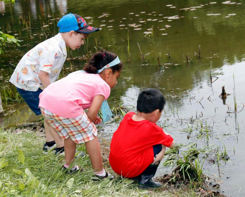 Children looking at the animals in the pond at the L.C. Bates Museum